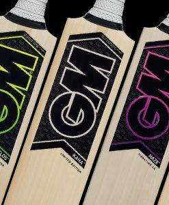 Gunn and Moore cricket bats