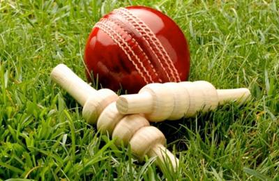 Hard Ball Cricket