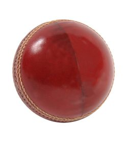 aero-net-practice-hard-cricket-ball