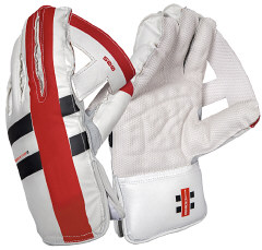 GN Predator3 500 wicketkeeping gloves