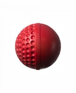Swinga-techinque-training-cricket-ball-red