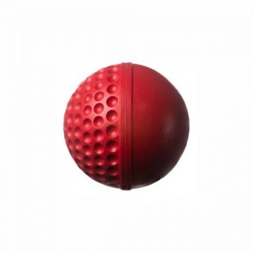 Swinga-techinque-training-cricket-ball-red