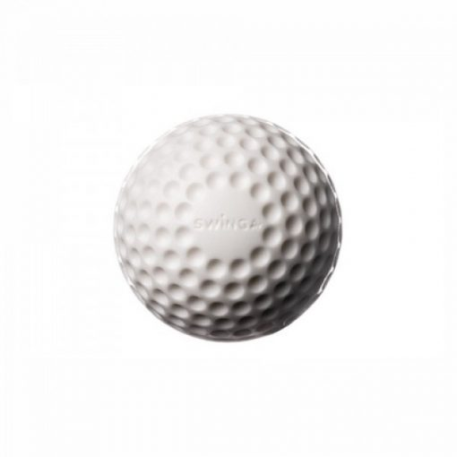 Swinga-techinque-training-cricket-ball-white